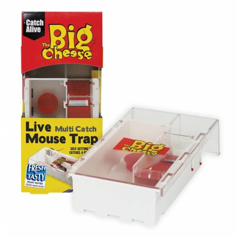 Live Multi-Catch Mouse Trap