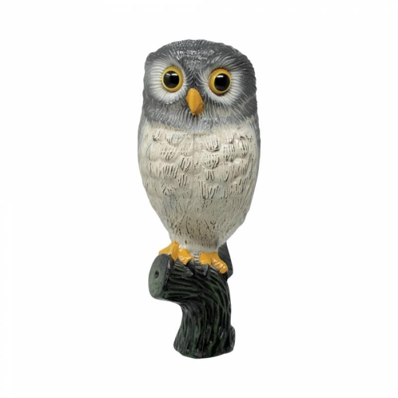 Little Owl grey